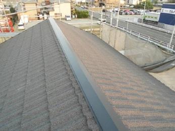 瓦が飛んだ箇所の適切で早い応急処置をし、屋根は前から気になっていた全体を葺き替える提案もしっかりと説明してくれて納得できた。